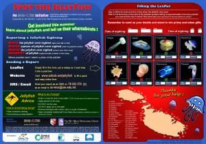 Leaflet- Spot the Jellyfish
