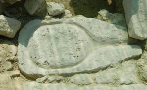 Magħsar żgħir li nstab dis-sena