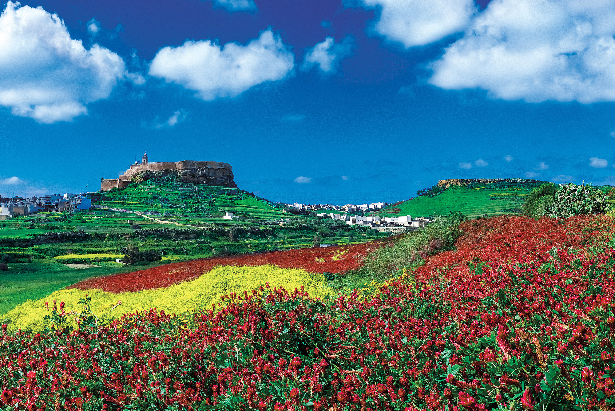 Daniel Cilia - Gozo countryside.jpg