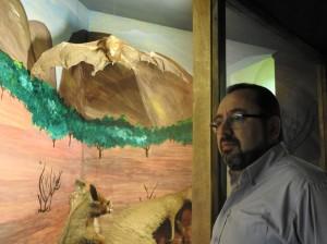 Senior Curator John Joseph Borg besides a specimen of a fruit bat located at the Museum in Mdina (Photo - Fiona Vella)2