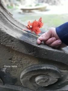 Villa Frere Gardens - Fiona Vella (1)